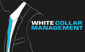 White Collar Management AB | Project- Programme Manager, Busíness Analyst, IT Management, Management Consultant, etc.